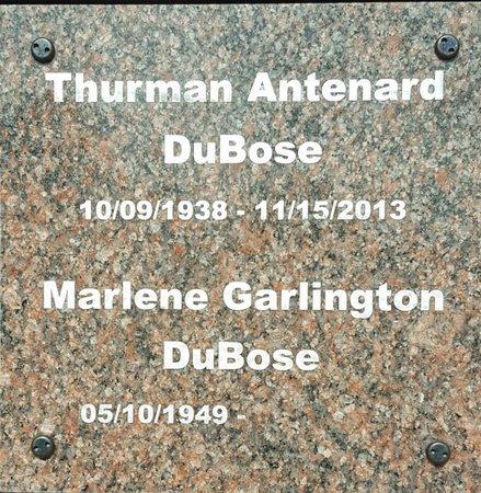 DUBOSE, THURMAN ANTENARD - Forsyth County, North Carolina   THURMAN ANTENARD DUBOSE - North Carolina Gravestone Photos