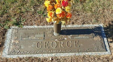 GEORGE, IRENE S. - Forsyth County, North Carolina | IRENE S. GEORGE - North Carolina Gravestone Photos