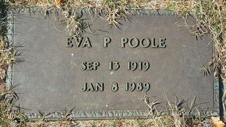 POOLE, EVA P - Forsyth County, North Carolina | EVA P POOLE - North Carolina Gravestone Photos