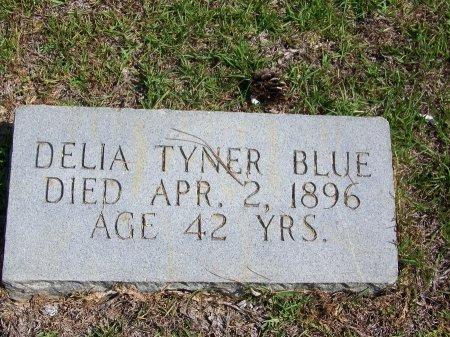 TYNER BLUE, DELIA - Hoke County, North Carolina   DELIA TYNER BLUE - North Carolina Gravestone Photos