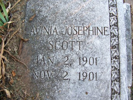 SCOTT, LAVINIA JOSEPHINE - Mecklenburg County, North Carolina | LAVINIA JOSEPHINE SCOTT - North Carolina Gravestone Photos