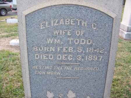 TODD, ELIZABETH C. - Mecklenburg County, North Carolina | ELIZABETH C. TODD - North Carolina Gravestone Photos