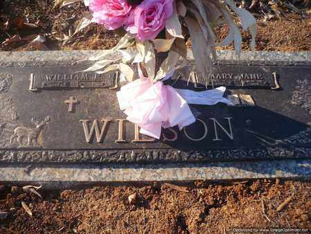 WILSON, MARY JANE - Mecklenburg County, North Carolina | MARY JANE WILSON - North Carolina Gravestone Photos