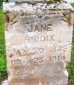 BIDDIX, JANE - Mitchell County, North Carolina | JANE BIDDIX - North Carolina Gravestone Photos