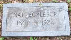 BURLESON, NAT - Mitchell County, North Carolina | NAT BURLESON - North Carolina Gravestone Photos