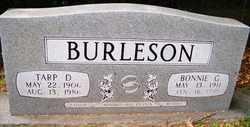 BURLESON, TARP D. - Mitchell County, North Carolina   TARP D. BURLESON - North Carolina Gravestone Photos