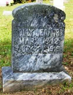 LEDFORD, POLLY - Mitchell County, North Carolina | POLLY LEDFORD - North Carolina Gravestone Photos