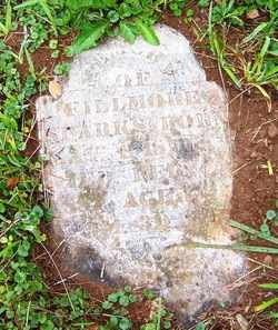SPARKS, FILLMORE - Mitchell County, North Carolina | FILLMORE SPARKS - North Carolina Gravestone Photos