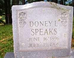 SPEAKS, DONEY L. - Mitchell County, North Carolina | DONEY L. SPEAKS - North Carolina Gravestone Photos