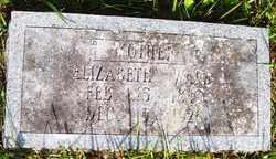 WARD, ELIZABETH - Mitchell County, North Carolina | ELIZABETH WARD - North Carolina Gravestone Photos