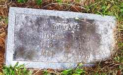 WARD, LOGAN - Mitchell County, North Carolina | LOGAN WARD - North Carolina Gravestone Photos