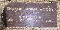 WOODY, CHARLIE JUNIOR - Mitchell County, North Carolina | CHARLIE JUNIOR WOODY - North Carolina Gravestone Photos