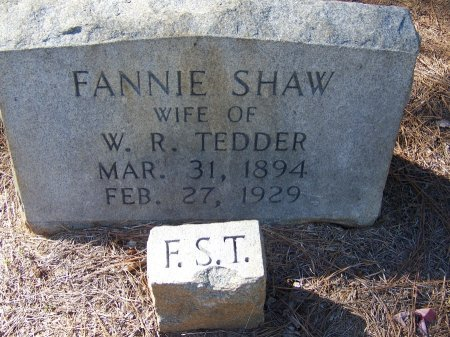 TEDDER, FANNY - Montgomery County, North Carolina | FANNY TEDDER - North Carolina Gravestone Photos